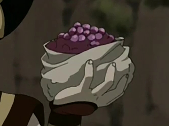 File:Purple berries.png