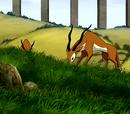 Flora en Fauna in de Wereld van Avatar
