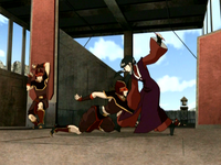 Mai fighting gondola guards