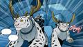 Snow leopard caribou.png