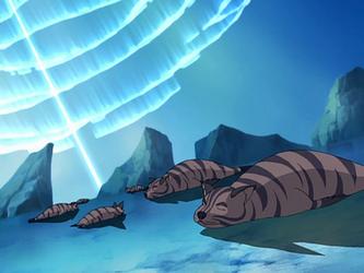 Tiger Seal Latest?cb=20140102123751