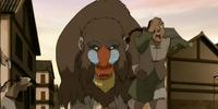 Elephant mandrill