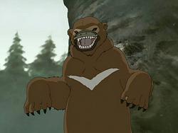 Platypus bear