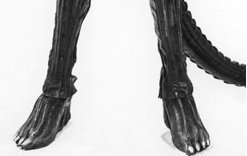 File:The Alien's feet.png