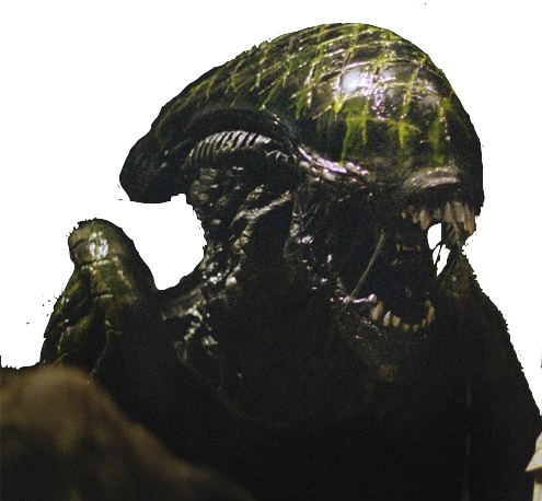 File:Aliengrid AVP3 AVP1full copy.png
