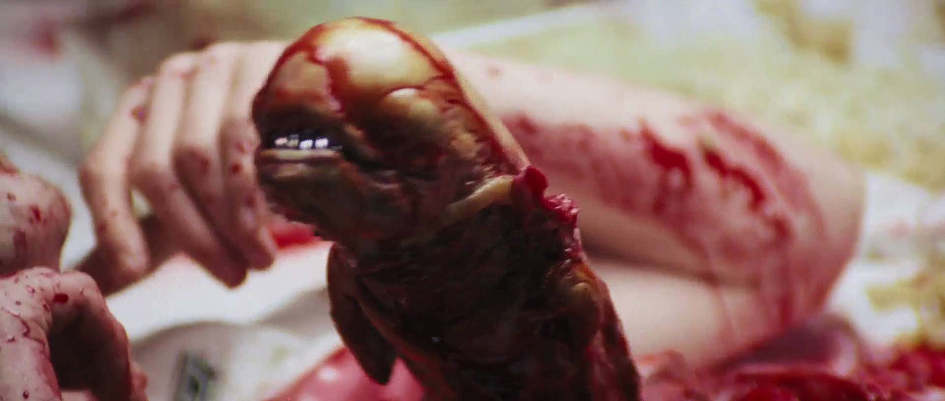 Image The Alien As Chestburster Png Xenopedia Fandom