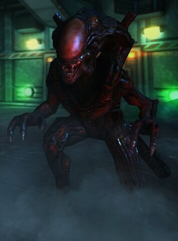 File:Berserker-Alien.jpg