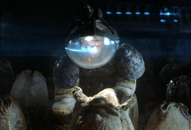 File:Alien Eggs.jpg