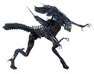NECA-Alien-Xenomorph-Queen