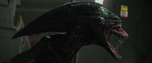 File:300px-Normal prometheus-bluray-1131.png