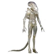 Neca-alien-warrior-series-7-big-chap