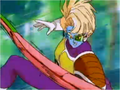 Piccolo Punching Salza