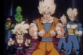 The z fighters
