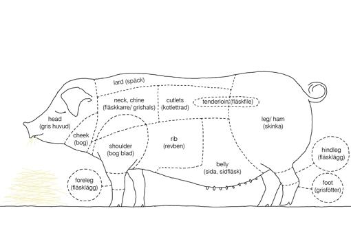 cuts of bacon bacon wiki fandom powered by wikia : pork diagram - findchart.co