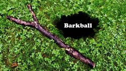 Barkball