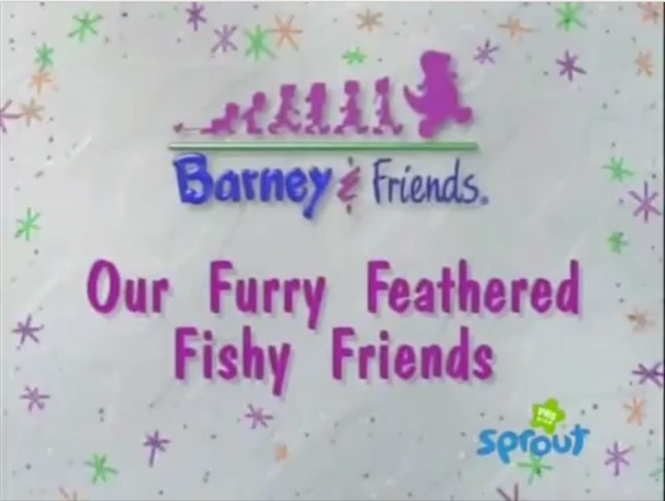 Our Furry Feathered Fishy Friends