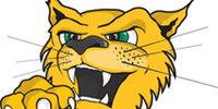 Wilmington (DE) Wildcats