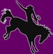 New Mexico Highlands Cowboys
