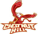 Chestnut Hill Griffins