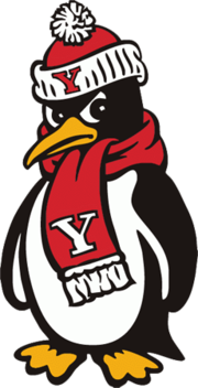 File:Youngstown State Penguins.png
