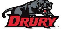 Drury Panthers