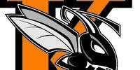 Kalamazoo Hornets