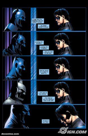 File:Nightwing-20090109032657391.jpg