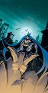 Batman-dc-comics-20080714012315983