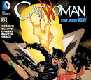 Catwoman (Volume 4) Issue 33