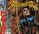 Nightwing (Volume 2) Issue 19