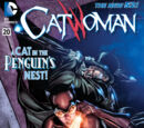 Catwoman (Volume 4) Issue 20