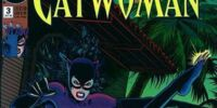 Catwoman (Volume 2) Issue 3