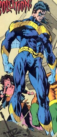 File:1627666-nightwing3.jpg