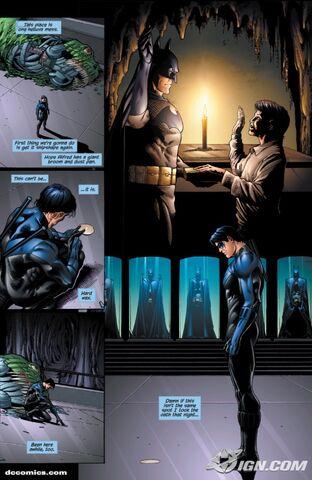 File:Nightwing-20090109032700187.jpg