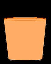 Cj body