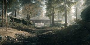 BFHL Backwoods
