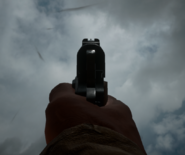 M1911 Iron Sights