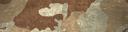 BF4 ERDL Desert Paint