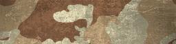 File:BF4 ERDL Desert Paint.png