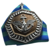 Carrier Assault Medal