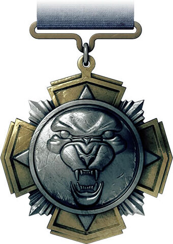 File:Squad Rush Medal.jpg