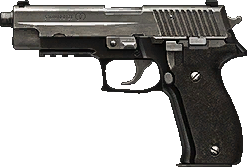 Bf4 p226.png