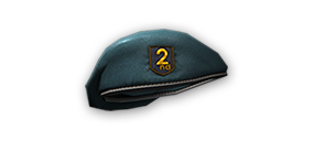 File:2nd Birthday Beret.png