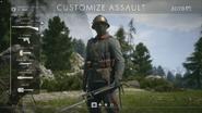 Austri-Hungarian Assault