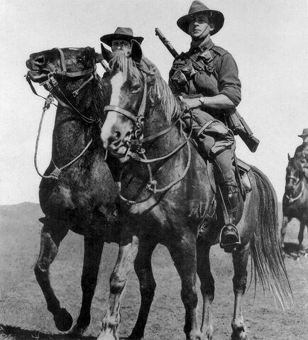 File:WW1 Horse.jpg