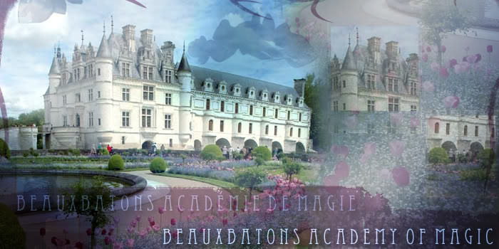 Guide To Getting Started Beauxbatons Academy Of Magic