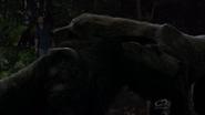 Werewolfcuddle