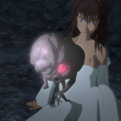 Casca saved by her <a href=