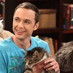 Sheldon and Zazzles.