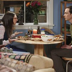 Sheldon's obsession with game systems is annoying Amy.